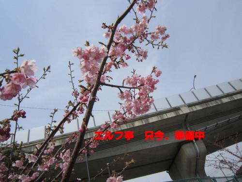 IMG_2791.jpg