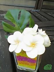 トロピカルアレンジ プルメリア1