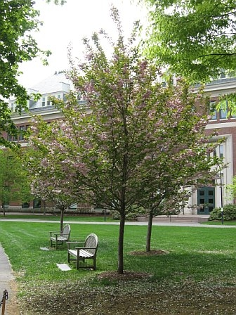 campus04.jpg