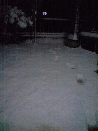 090124雪景色 9