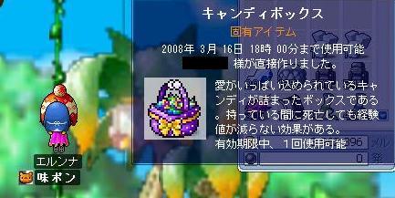 2008031408.jpg