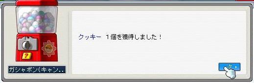 2008060608.jpg