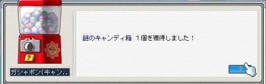 2008060611.jpg