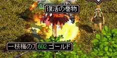 gazou8.jpg