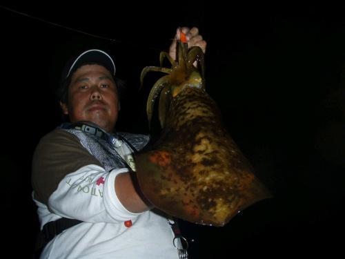 2008.6.6泉南アオリ4