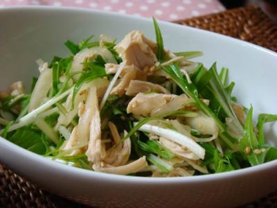 ささみと大根と水菜のごまサラダ