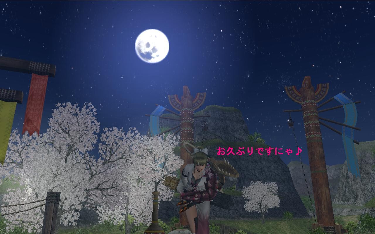 夜桜ごあいさつ