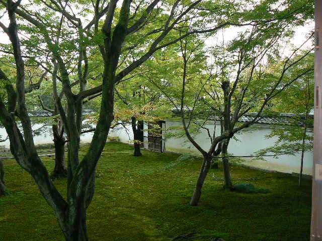 京都 妙顕寺の庭