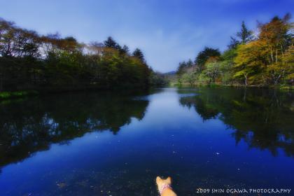 雲場池 全体景観