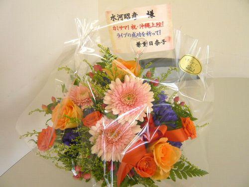 P1000516-blog.jpg