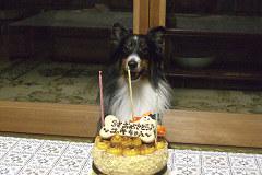 ケーキを前にポーズ