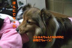 ユキねえちゃんとMARINと仲間でちゅー(゚o゚)