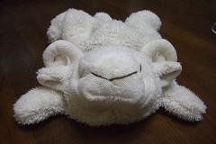 羊さん 正面から