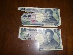 食べられた千円札