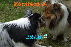 ごめんね by MARIN