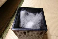 ゴミ箱いっぱいの抜け毛