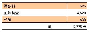 090919 凛の診療明細書
