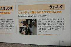 莉乃さんブログ紹介