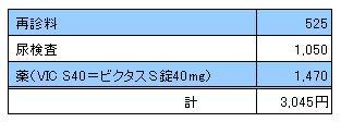 MARIN 20091114診療明細書