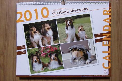 2010年度版 365カレンダー