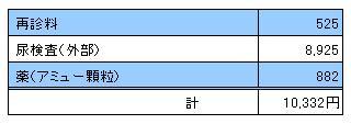 MARIN 20091205診療明細書
