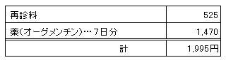 MARIN 20091212診療明細書