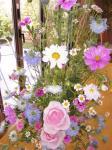 flower brog 16