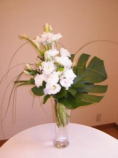 flower brog 19