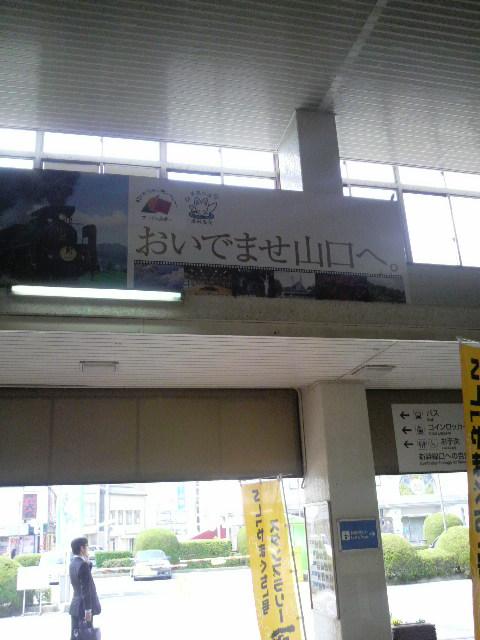 P1000129.jpg