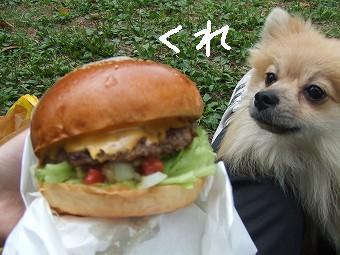 AMRSのチーズバーガー