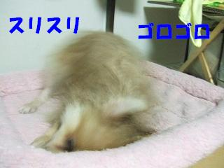 20070925000650.jpg