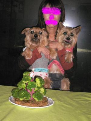 ワンケーキの前