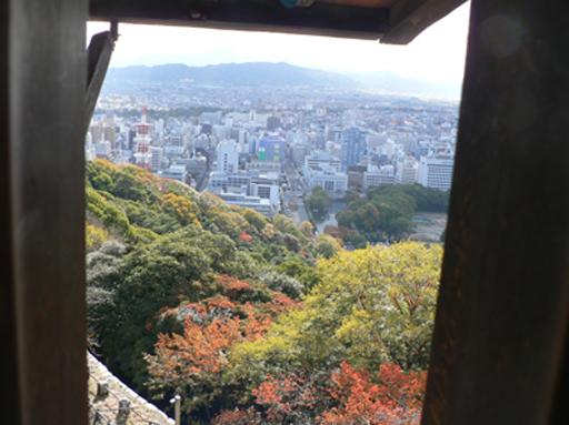 matuyana2_20081219171050.jpg