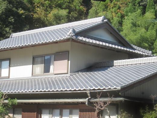sikawa6.jpg