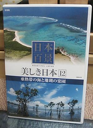 南国DVD