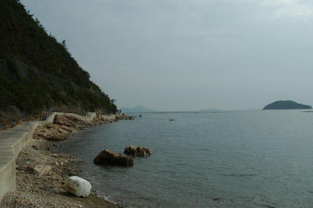 海沿いの遊歩道