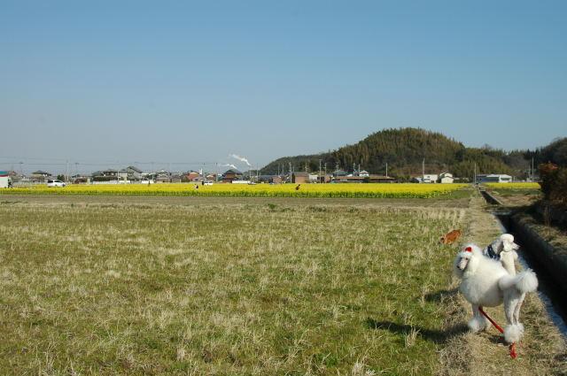 2006_0315n0047.jpg