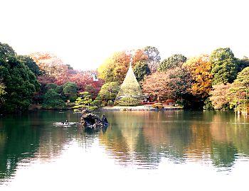 江戸の名園を今に残す和歌の庭
