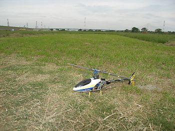飛行機jの着陸ように刈った場所がヘリに丁度良いんだな~