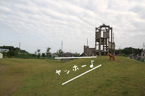 0619-3.jpg