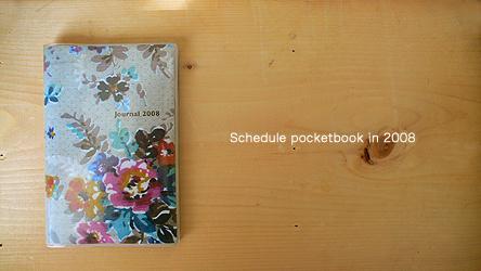 2008pocketbook