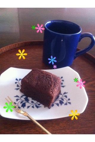 __gato-shokora1.jpg