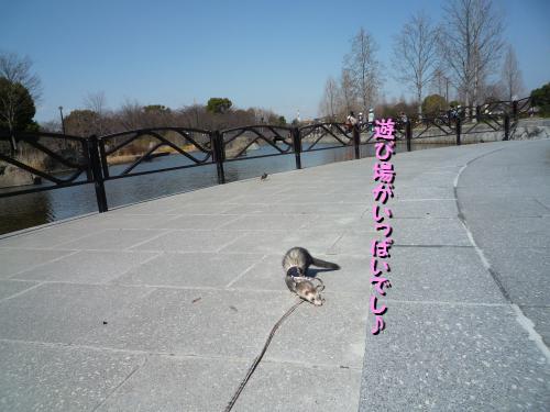 09-03-15-06.jpg