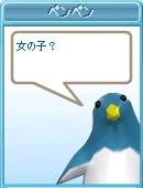 20080305_01.jpg