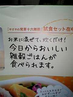 yazuya1