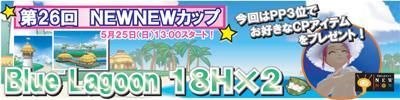 new5-a.jpg