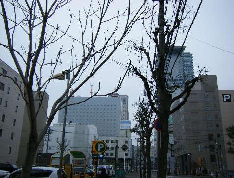 2008_11290032.jpg
