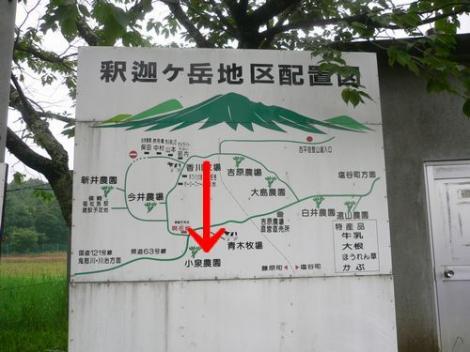 2009.7.3青木さん (6)