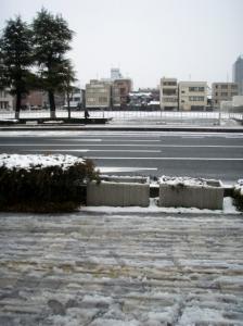 20080130雪