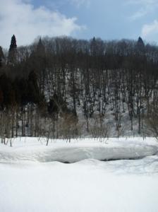20080310毛無山3